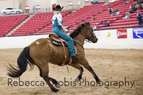 Rodeo.Horse_128wtmk